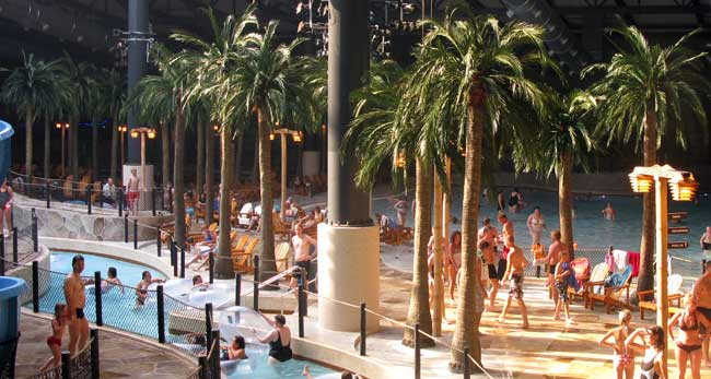 Palmtrees at Lalandia Waterpark in Billund, Denmark